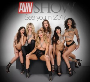 AVN-2016-see-you-2017